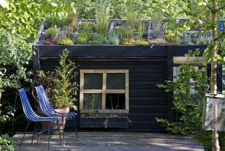 roof-top-shed-garden.jpg