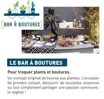 Bar a boutures - Salon Piscine et Jardin - Slowgarden