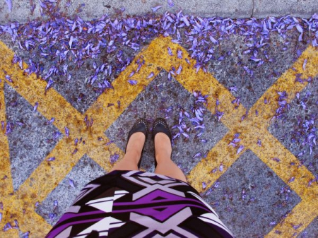 Jacaranda petals / The FTY photo