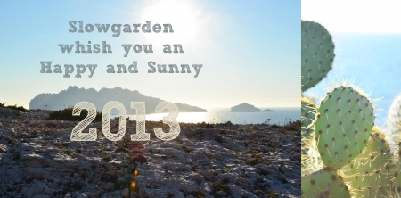 Slowgarden_HNY_2013.jpg
