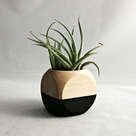 planter_via_lejardindeclaire_8.jpg